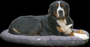 Hondenkussens kunnen ook goed gevuld worden met polyvlokken